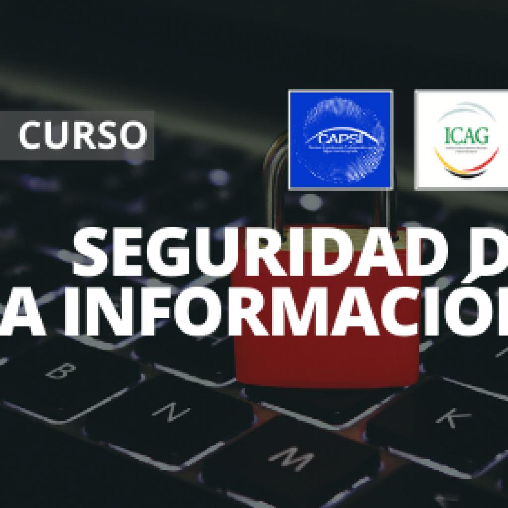Seguridad de la Información, Nivel I